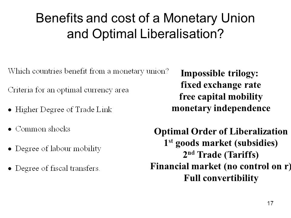 Benefits and cost of a Monetary Union and Optimal Liberalisation