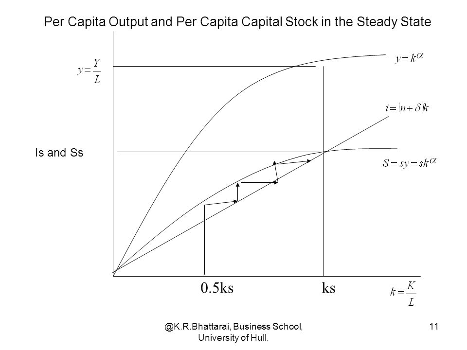 Per Capita Output and Per Capita Capital Stock in the Steady State