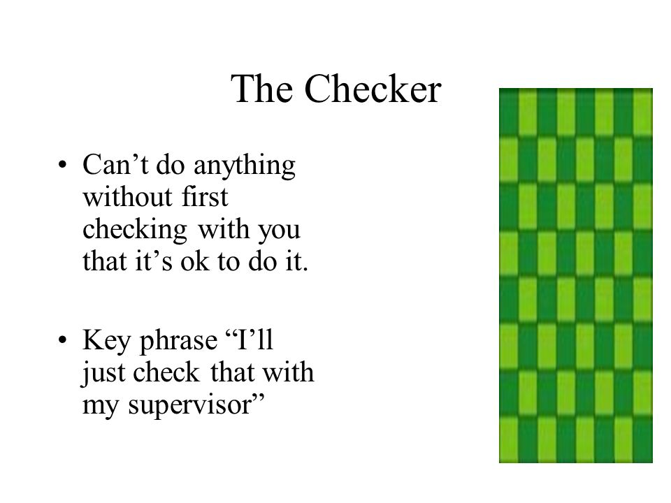 The Checker Can't do anything without first checking with you that it's ok to do it.