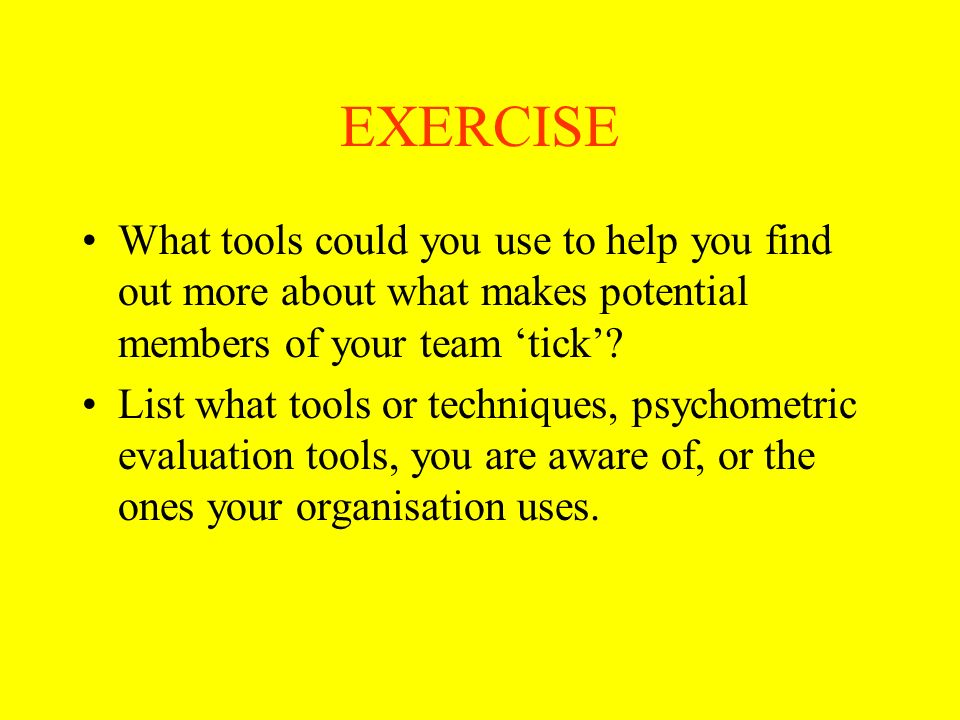 EXERCISE What tools could you use to help you find out more about what makes potential members of your team 'tick'