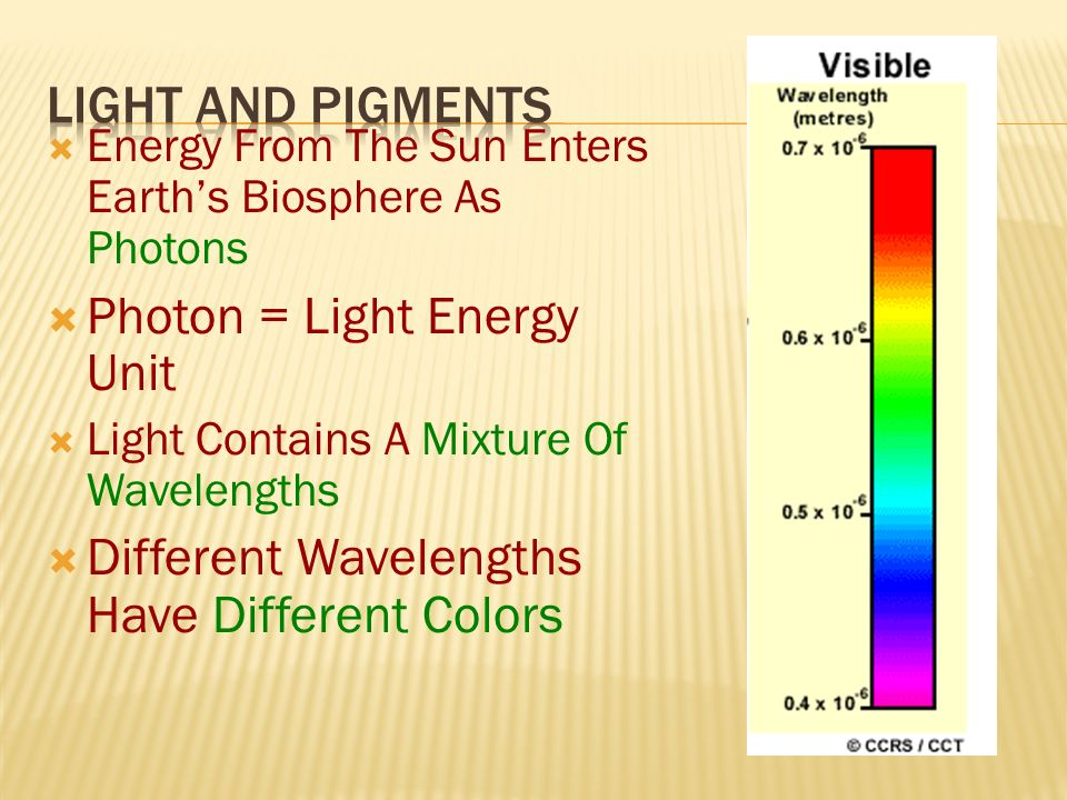 Photon = Light Energy Unit