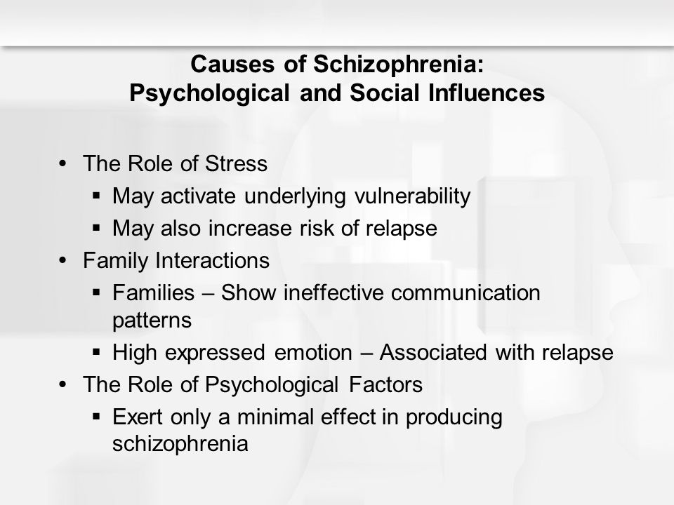 Schizophrenia causal factors