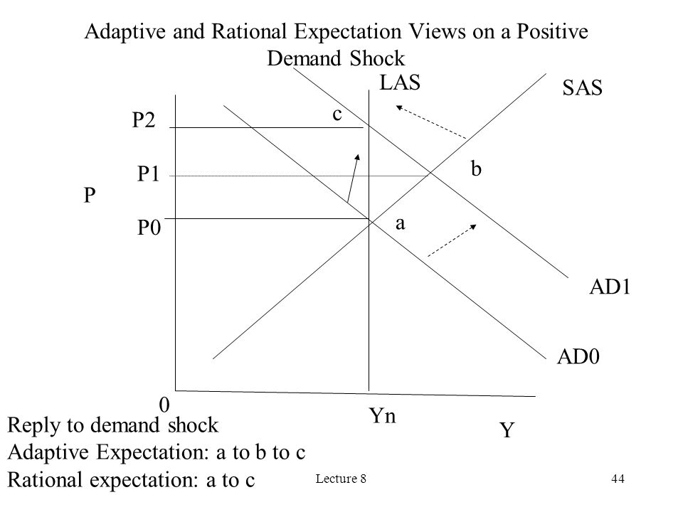Adaptive and Rational Expectation Views on a Positive Demand Shock