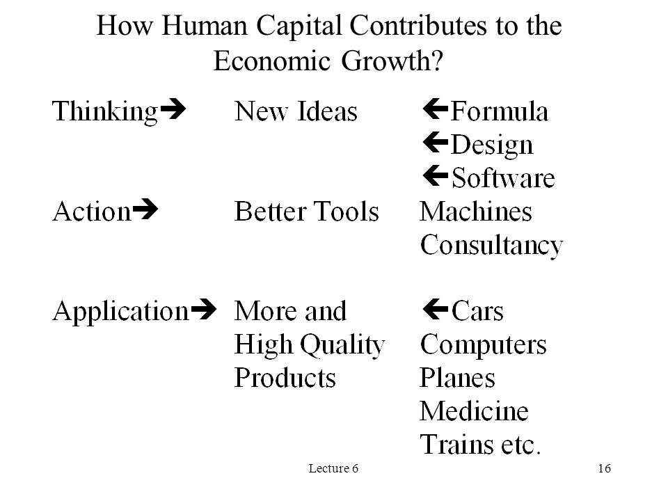 How Human Capital Contributes to the Economic Growth