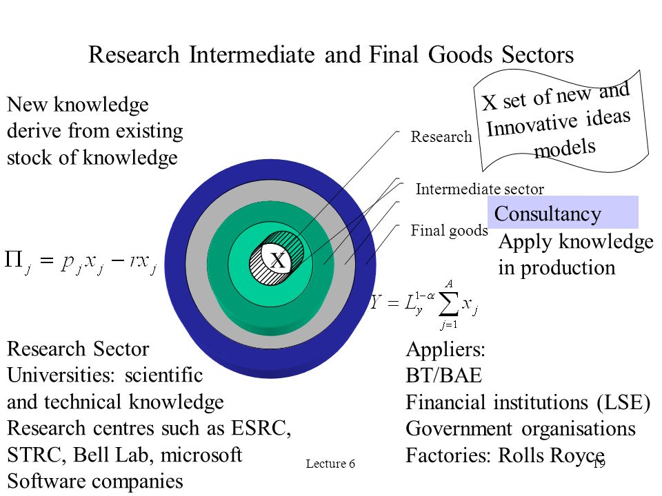 Research Intermediate and Final Goods Sectors