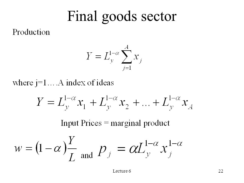 Final goods sector Lecture 6