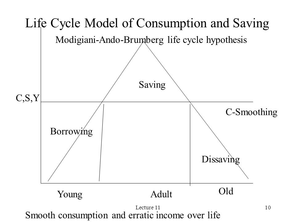 Life Cycle Model of Consumption and Saving