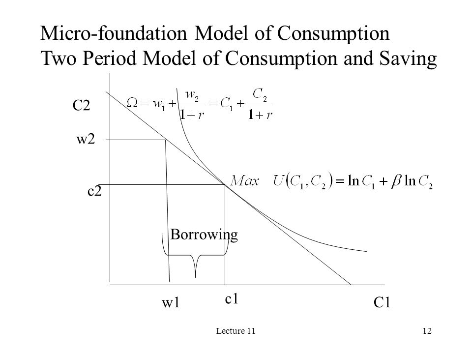 Micro-foundation Model of Consumption