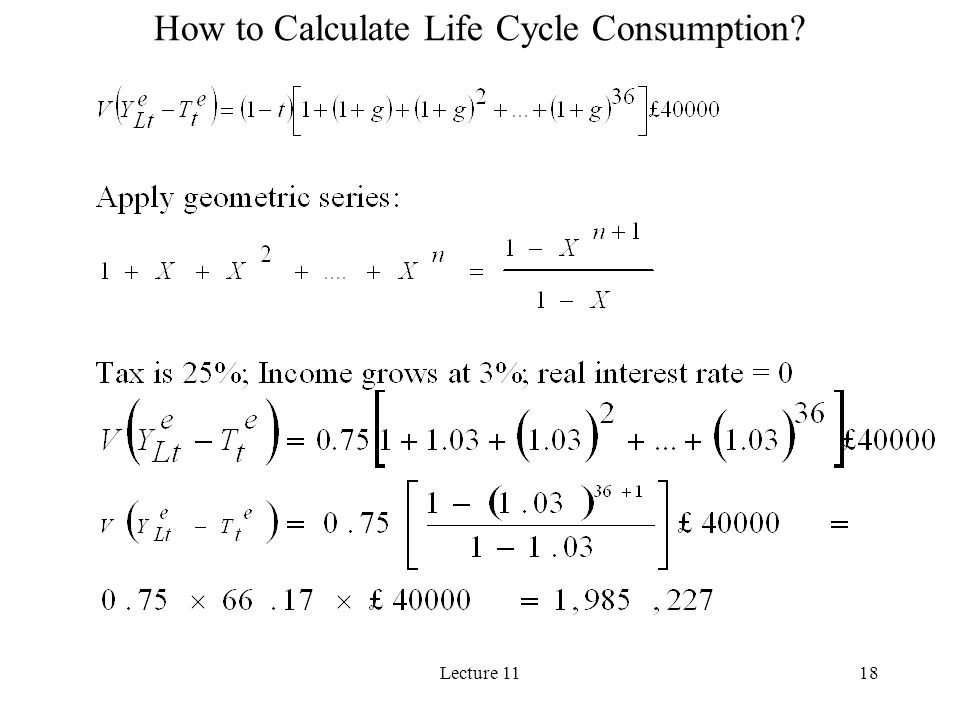 How to Calculate Life Cycle Consumption