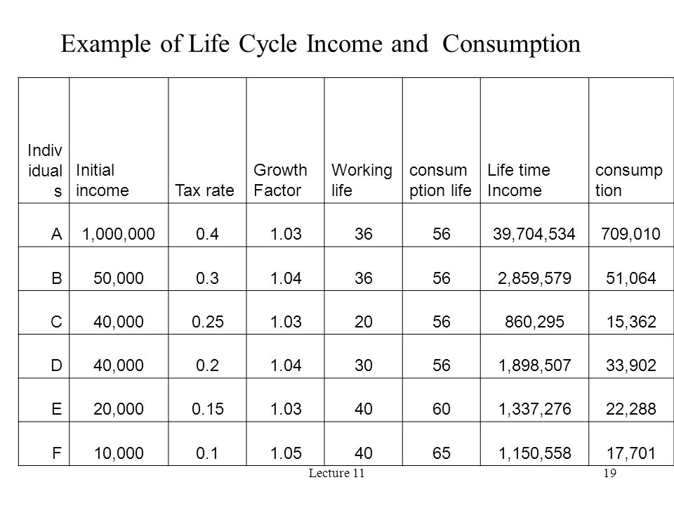 Example of Life Cycle Income and Consumption