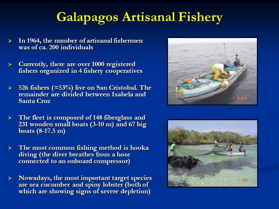 Galapagos Artisanal Fishery