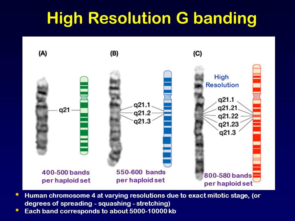 052215: Chromosome Analysis, High Resolution | LabCorp