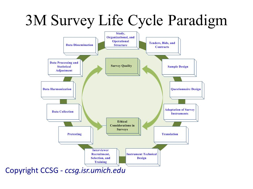 3M Survey Life Cycle Paradigm