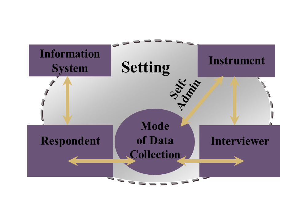 Setting Information System Respondent Interviewer Instrument Mode