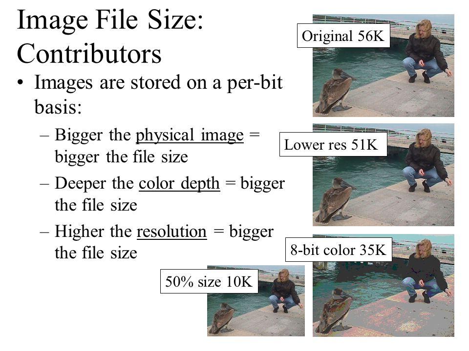 Image File Size: Contributors