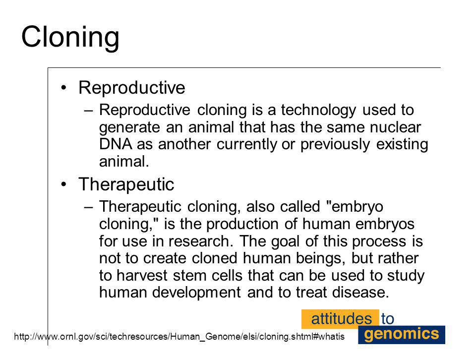 Cloning Reproductive Therapeutic