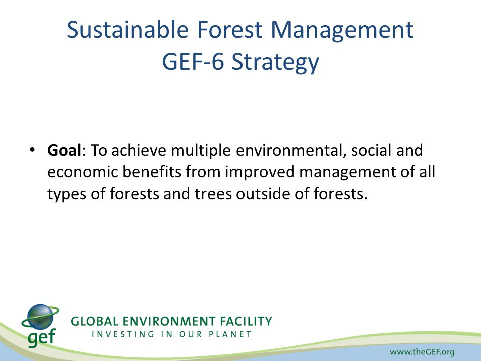 Sustainable Forest Management GEF-6 Strategy