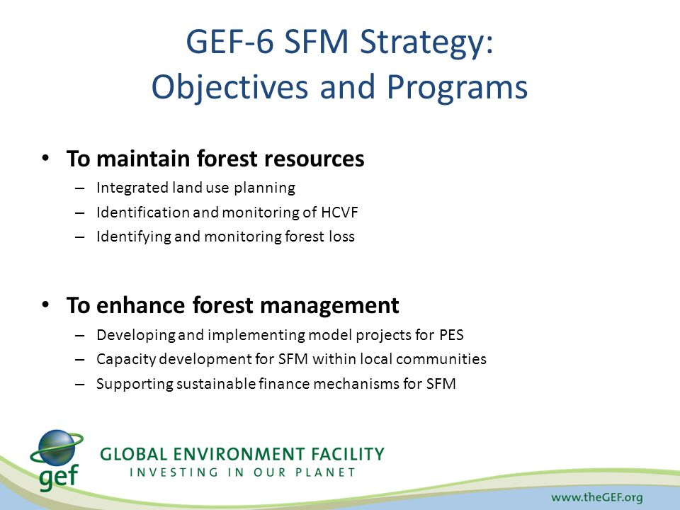 GEF-6 SFM Strategy: Objectives and Programs