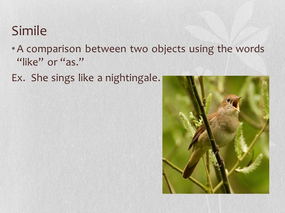 """comparison between ode to a nightingale Comparison and contrast between keats' """"ode to nightingale"""" and """"ode on a grecian urn"""" """"ode to nightingale"""" and """"ode on a grecian urn"""" are finest examples of pictorial quality and sensuousness."""