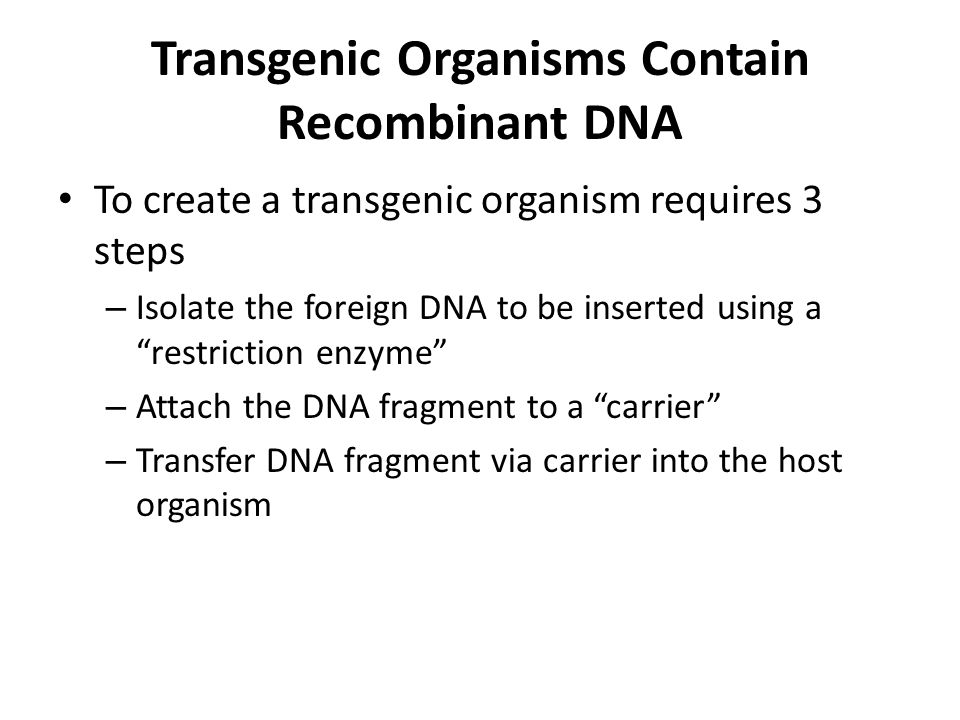 Transgenic Organisms Contain Recombinant DNA