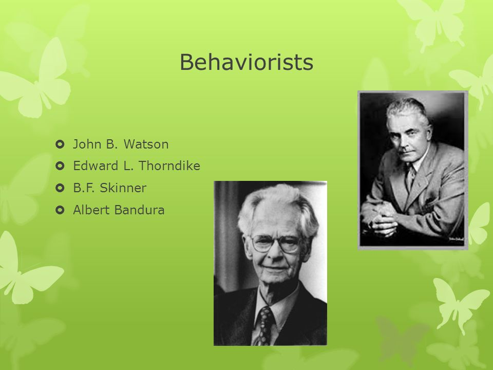 Perspectives of John B. Watson, B.F. Skinner and Edward C. Tolman - Essay Example