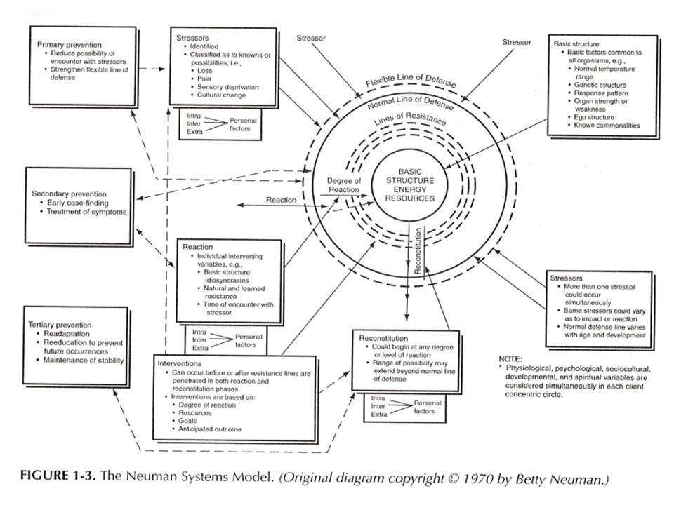 the neuman systems model of nursing