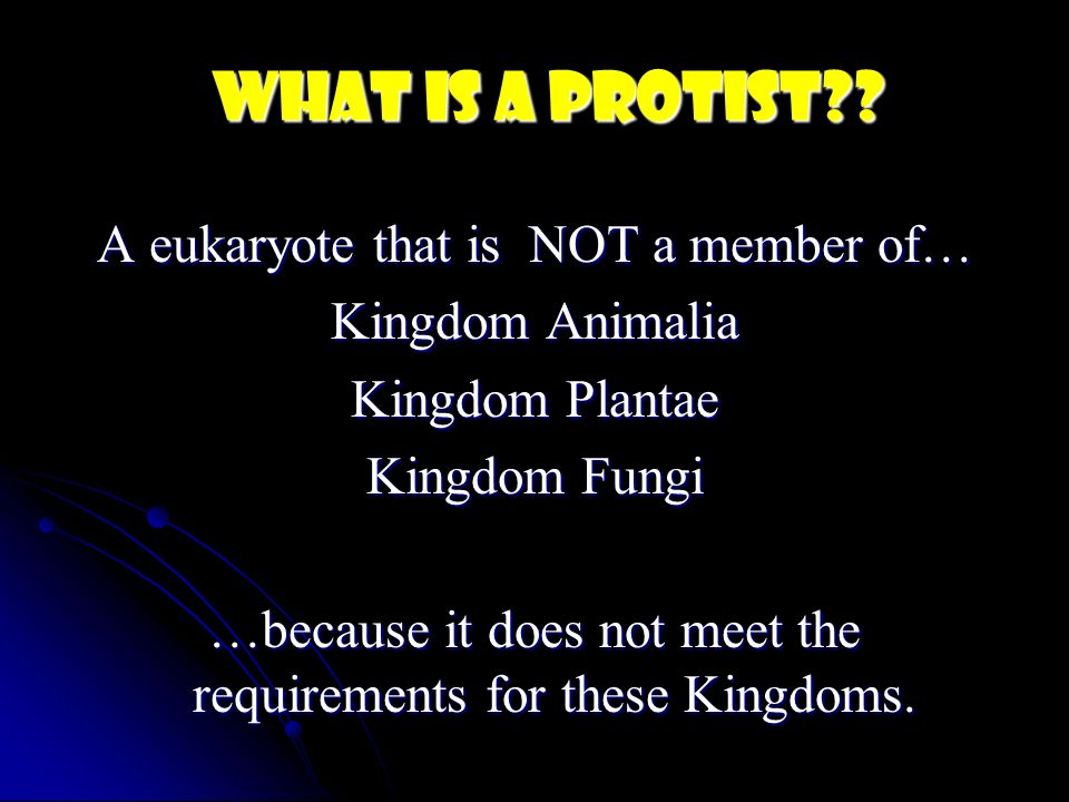 What is a protist A eukaryote that is NOT a member of…