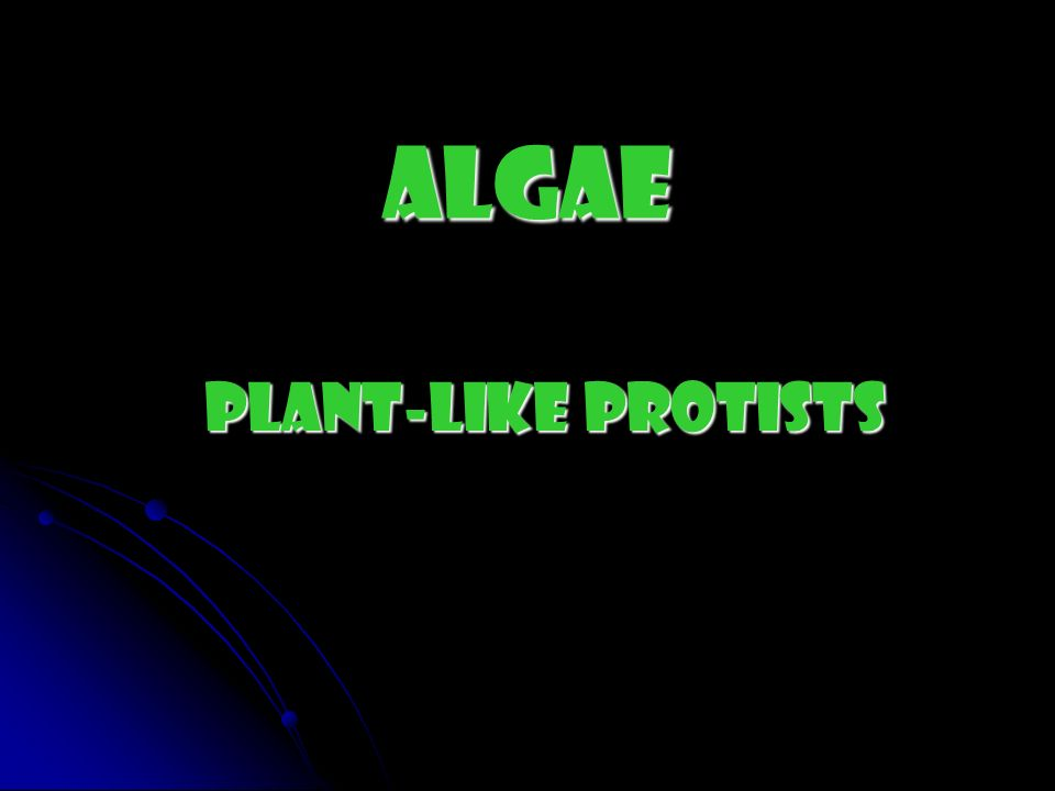 Algae Plant-like Protists