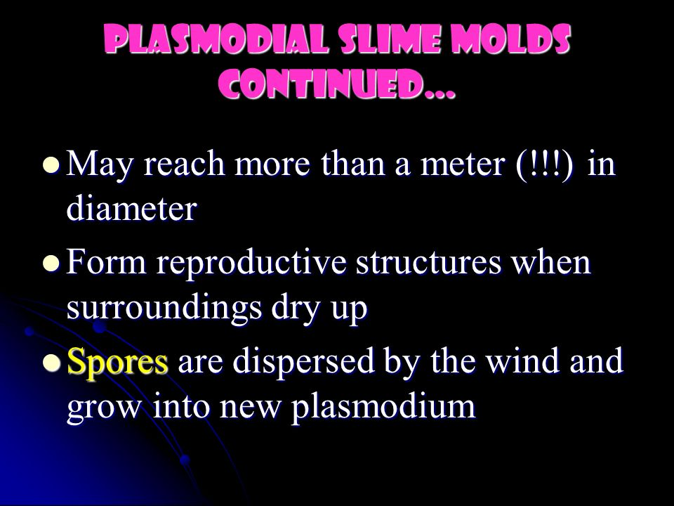 PlasmodiAL Slime Molds continued…