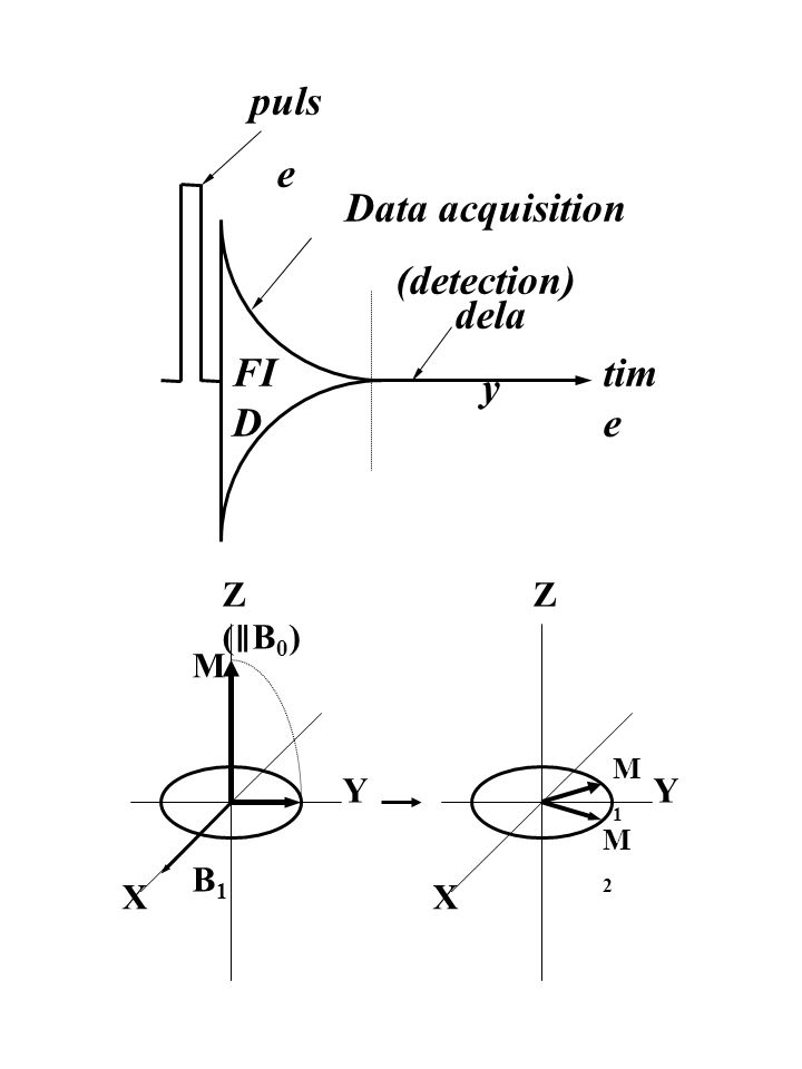 Principles Of Data Acquisition Experiment : Theory and experiments ppt download