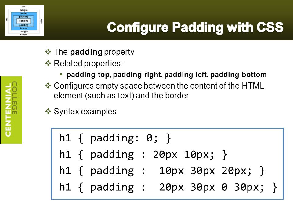Comp213 web interface design ppt video online download for Html table column padding
