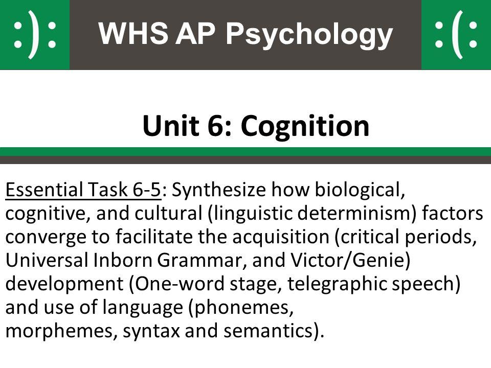 Ap psychology unit 6 - College paper Example September 2019