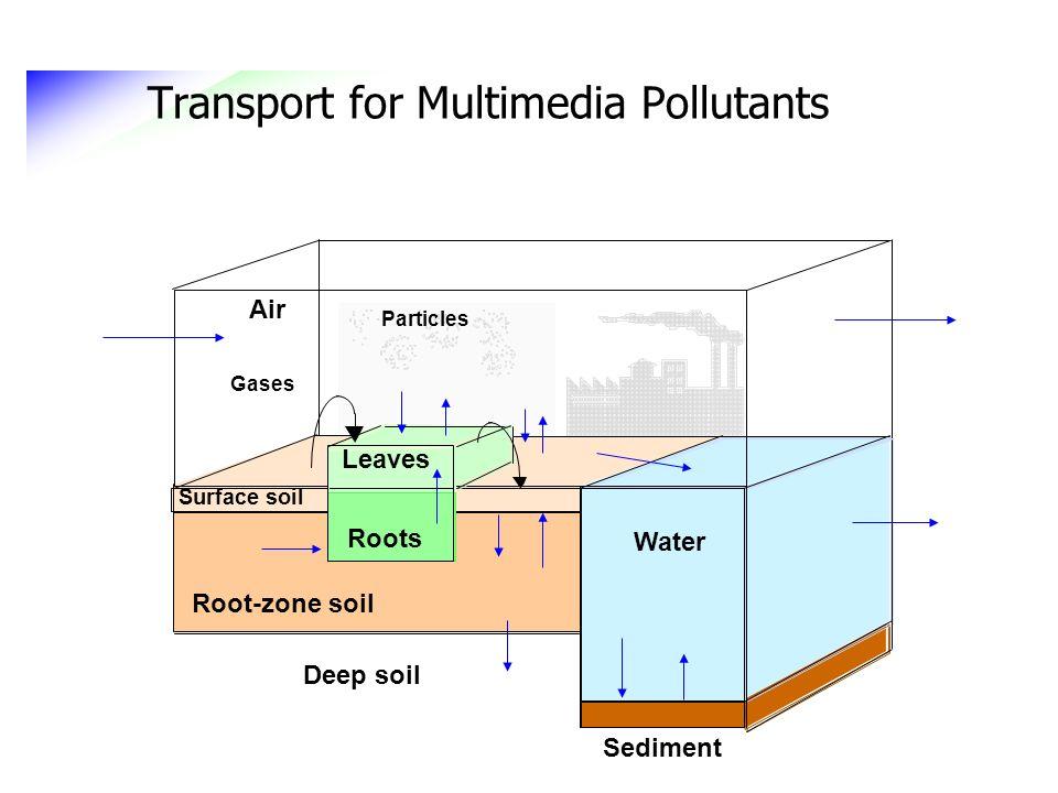 Transport for Multimedia Pollutants