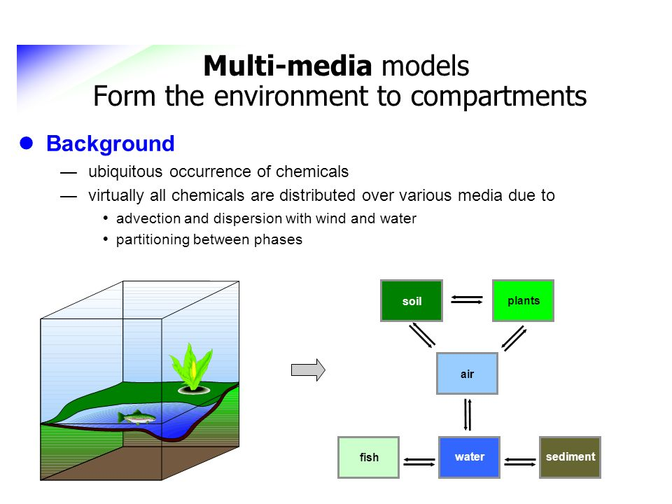Multi-media models Form the environment to compartments
