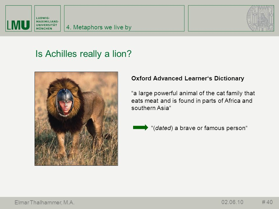 Is Achilles really a lion
