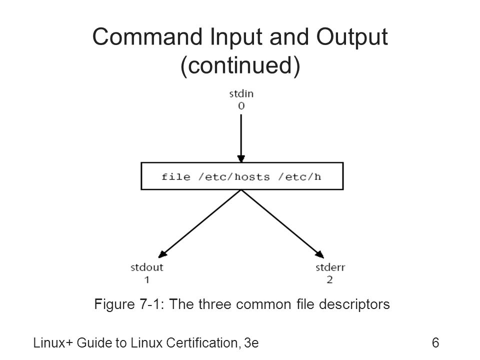 Command Input and Output (continued)