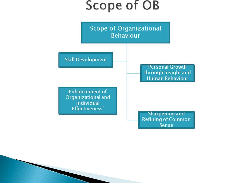 understanding organizational behaviour Organizational behavior and human performance  that might contribute to our  understanding of the relationship between the objective organizational structure .