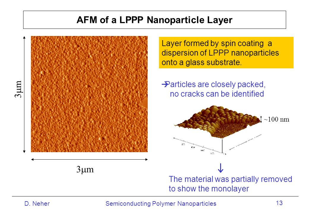 AFM of a LPPP Nanoparticle Layer