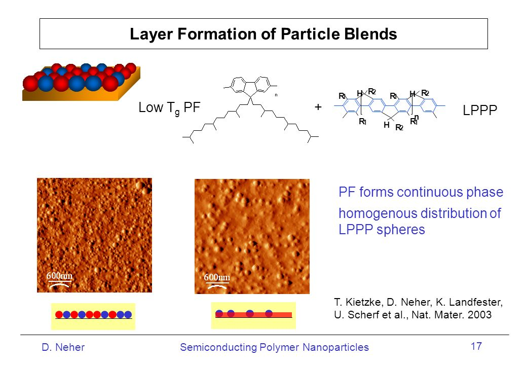 Layer Formation of Particle Blends
