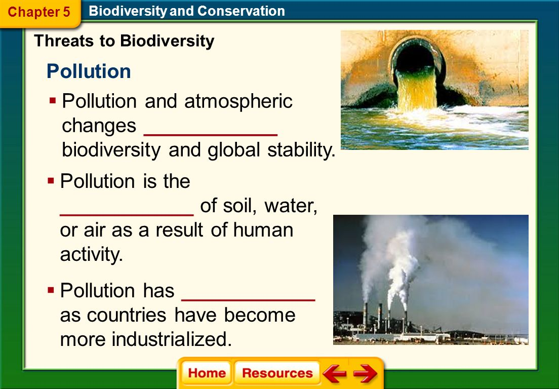 environmental pollution and conservation Click here for some links we believe you may find useful in researching environmental issues pollution laws and pollution control and conservation.