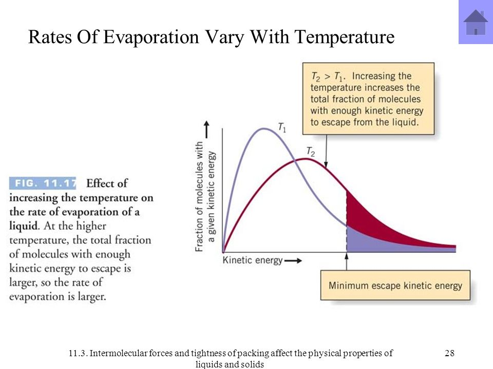 rate of evaporation of liquids Intermolecular attractions affect the rate of evaporation of a liquid because strong intermolecular attractions hold the molecules in a liquid together more tightly.