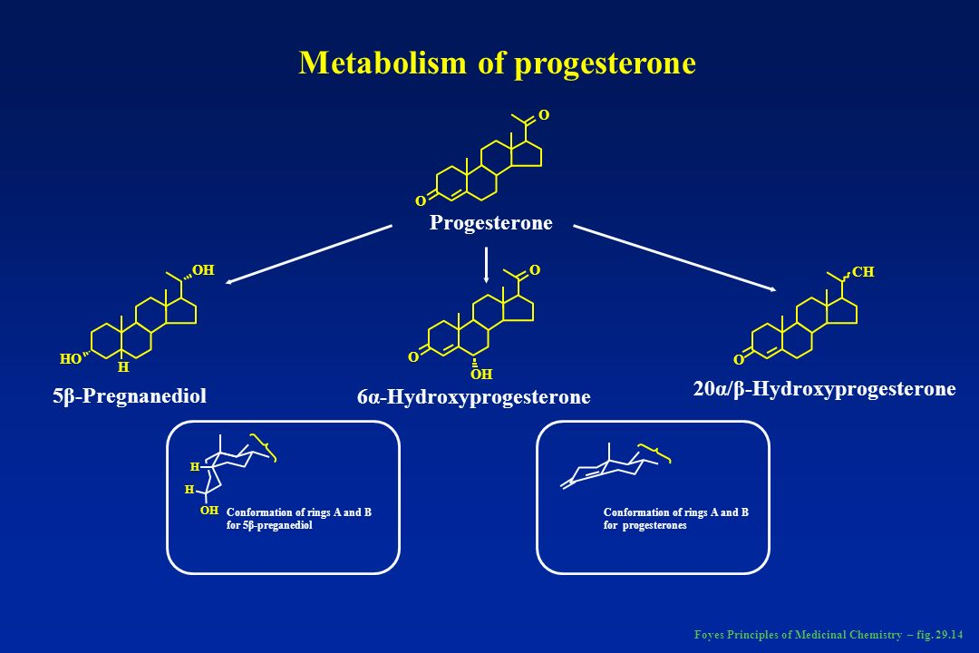 Metabolism of progesterone