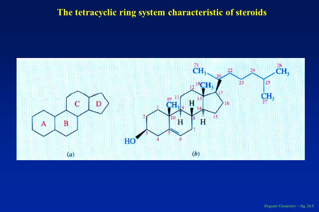 The tetracyclic ring system characteristic of steroids