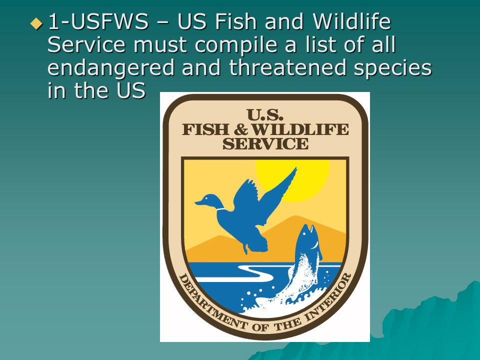 Chapter 10 section 1 what is biodiversity ppt video online download 54 1 usfws us fish and wildlife service must compile a list of all endangered and threatened species in the us sciox Gallery