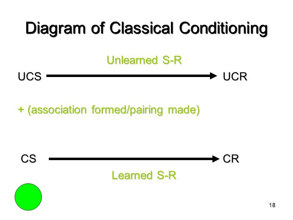 Classical Conditioning Diagram 94024 Trendnet