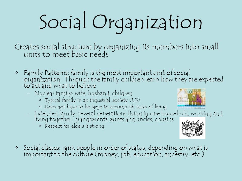 social organation Definition of social organization 1 : the kinship structure of a culture or society especially as constituted in a stabilized network of rules of descent and residence.