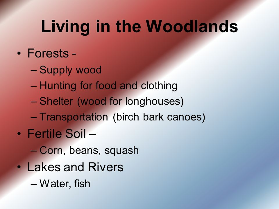 The Eastern Woodlands Iroquois Indians - ppt download