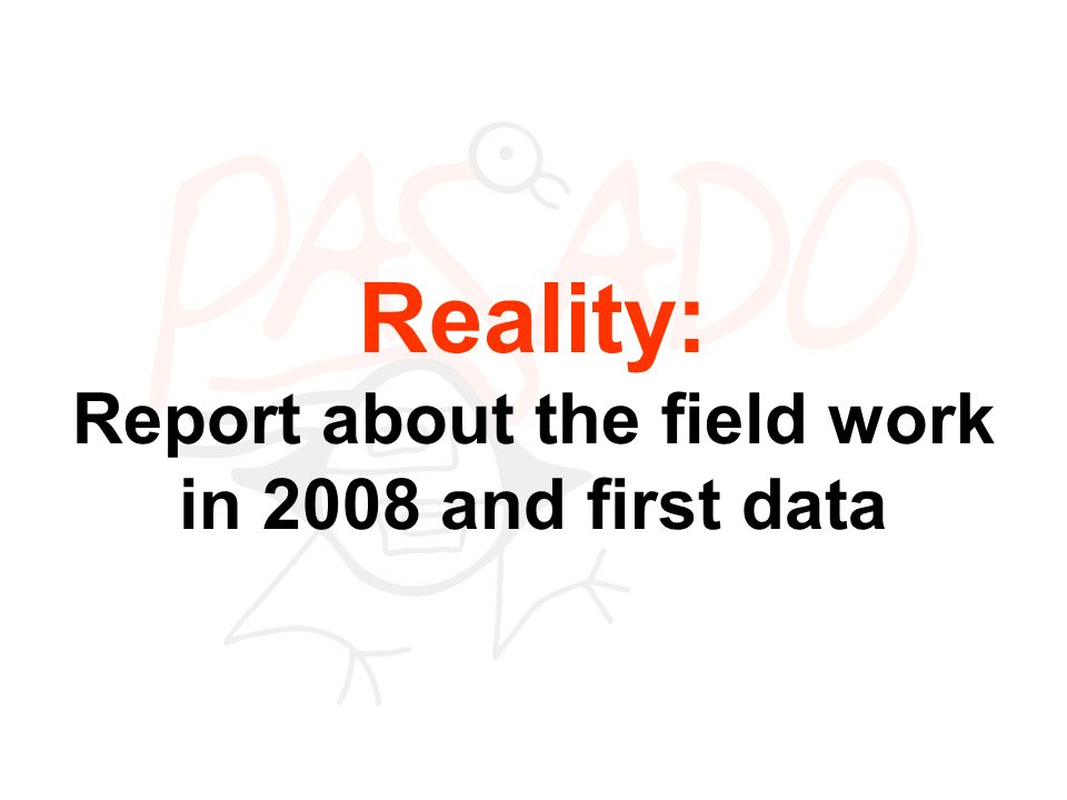 Reality: Report about the field work in 2008 and first data