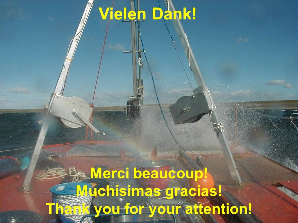 Merci beaucoup! Muchísimas gracias! Thank you for your attention!