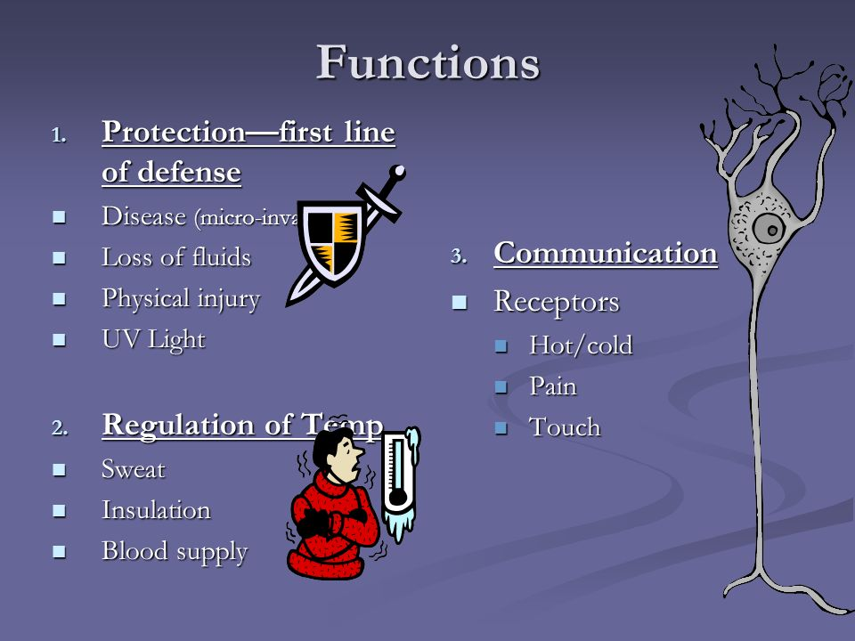 Functions Protection—first line of defense Communication